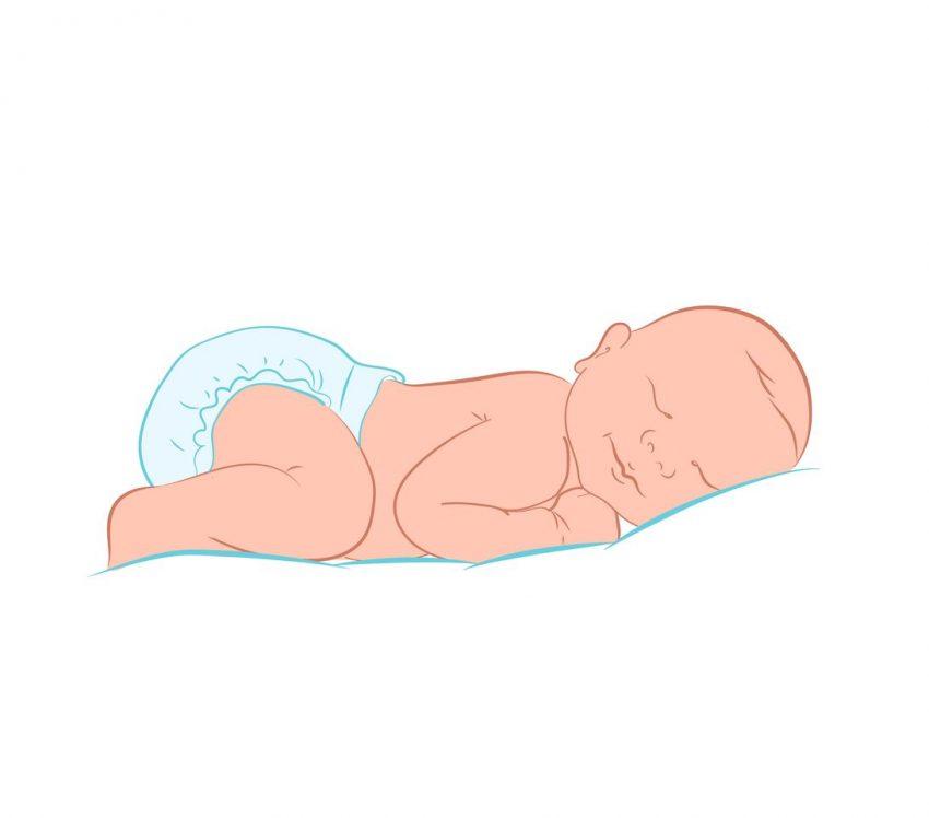 Dezvoltarea bebelușului. Săptămâna 14