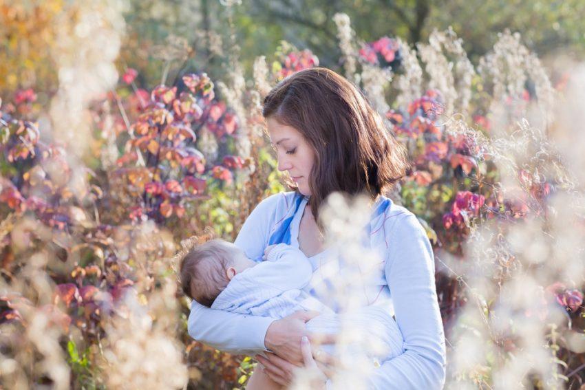 Povesti de alaptare / Totul despre mame