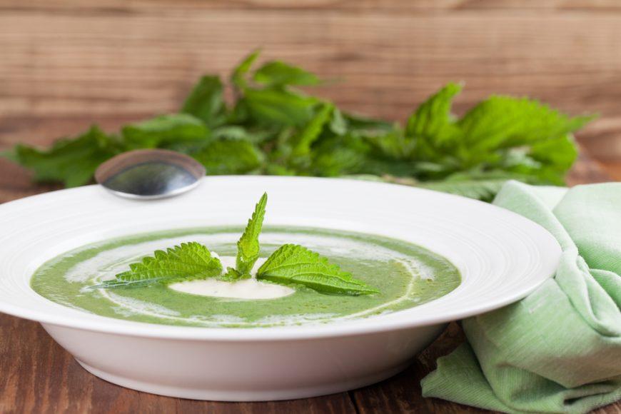 supa cremă de urzici farfurie