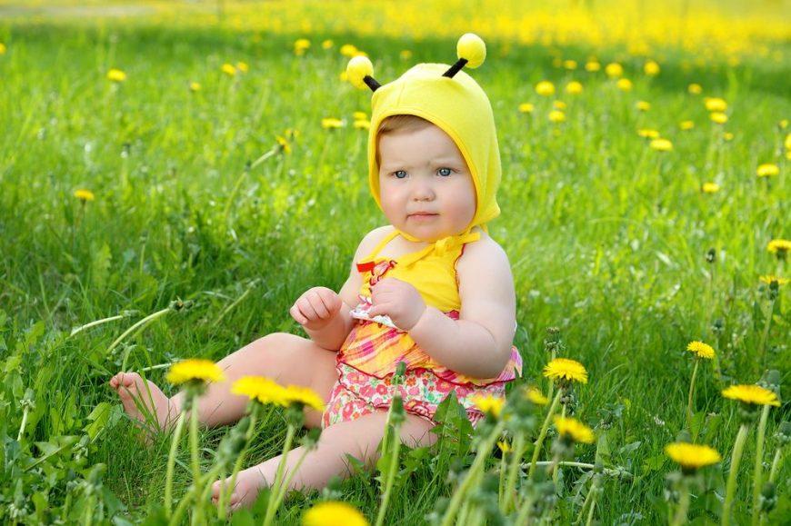 intepatura-de-albina-totul-despre-mame