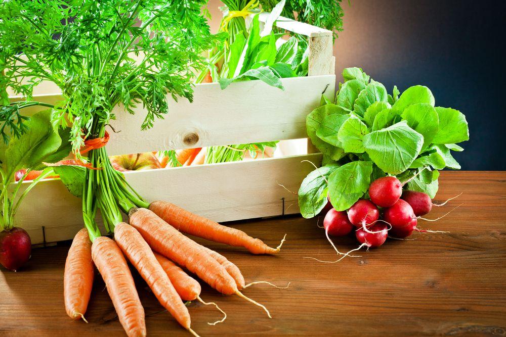 Salată-cu-morcovi-și-ridichi-de-la-1-2-ani