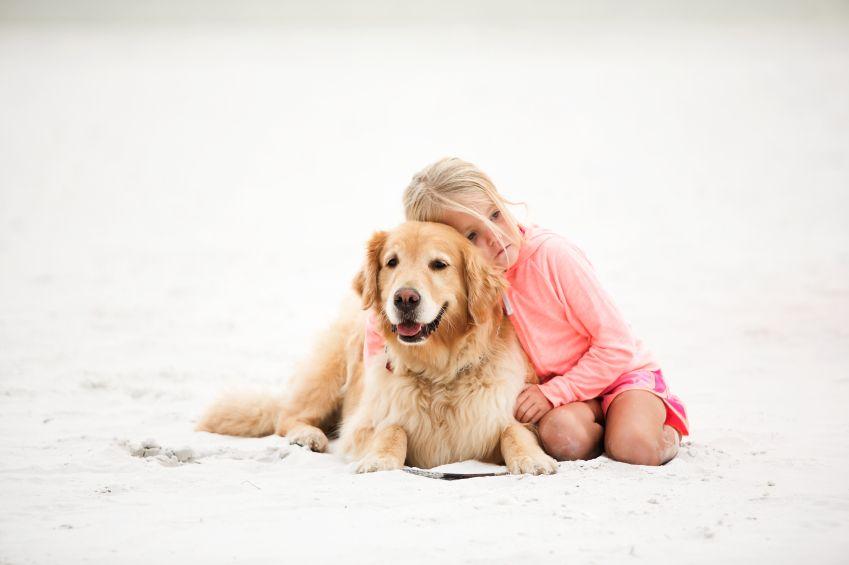 adoptia-unui-caine-totul-despre-mame