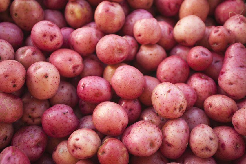 cartofi-copti-cu-parmezan-si-chimen-totul-despre-mame