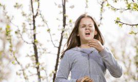rinita alergica la copii totul despre mame