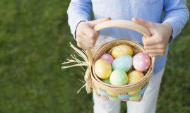 vanatoarea de oua totul despre mame