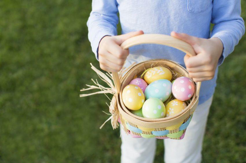 vântătoare de ouă