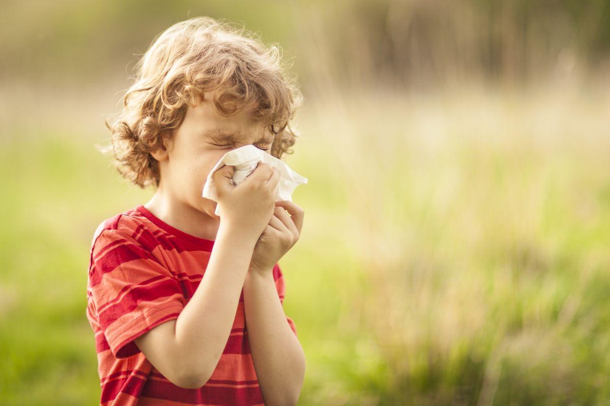 alergiile de vara