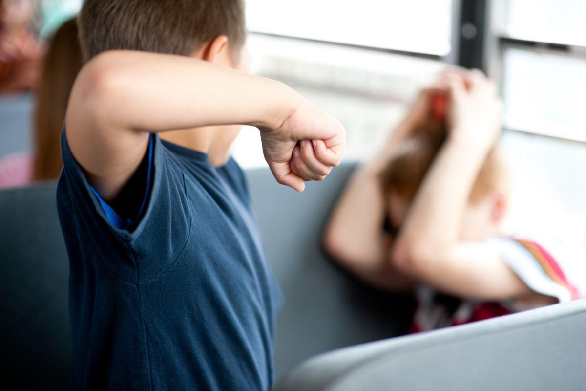 agresivitatea la școală