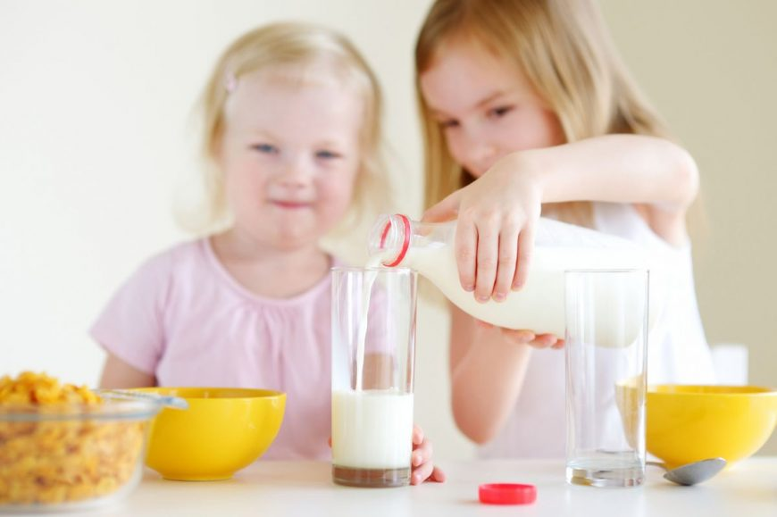 lapte integral