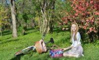 coș de picnic
