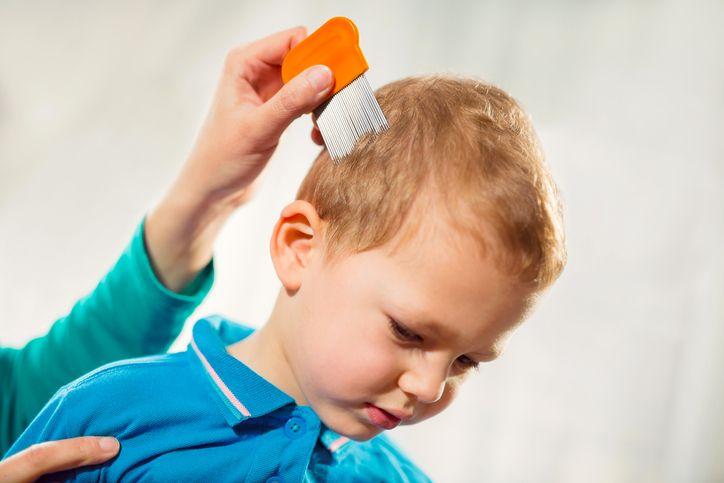 copil paduchi tratament
