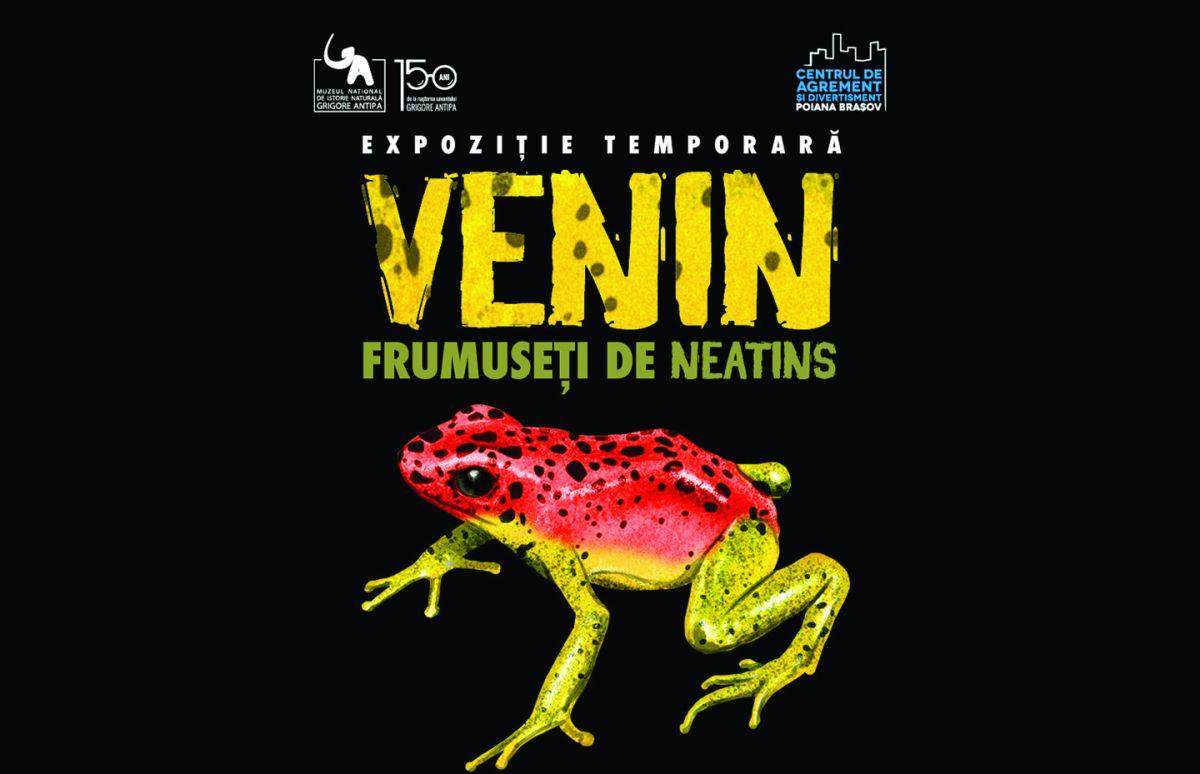 VENIN - FRUMUSETI DE NEATINS