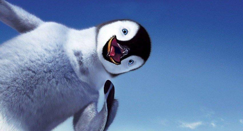 pinguin haios