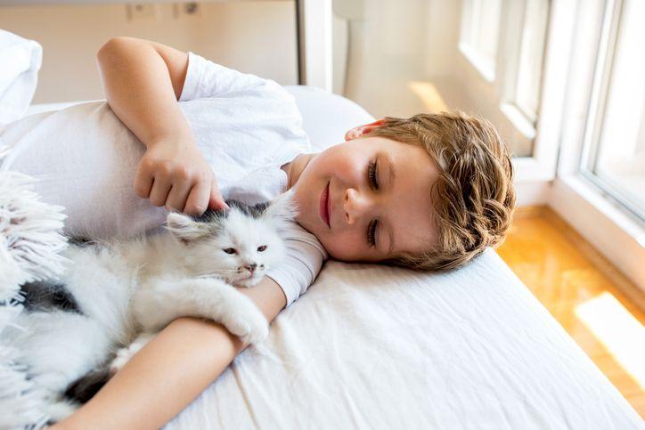 copil pisica pat joaca