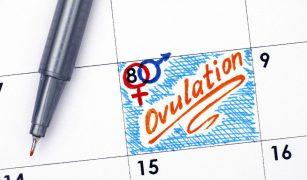 calendar ovulatie