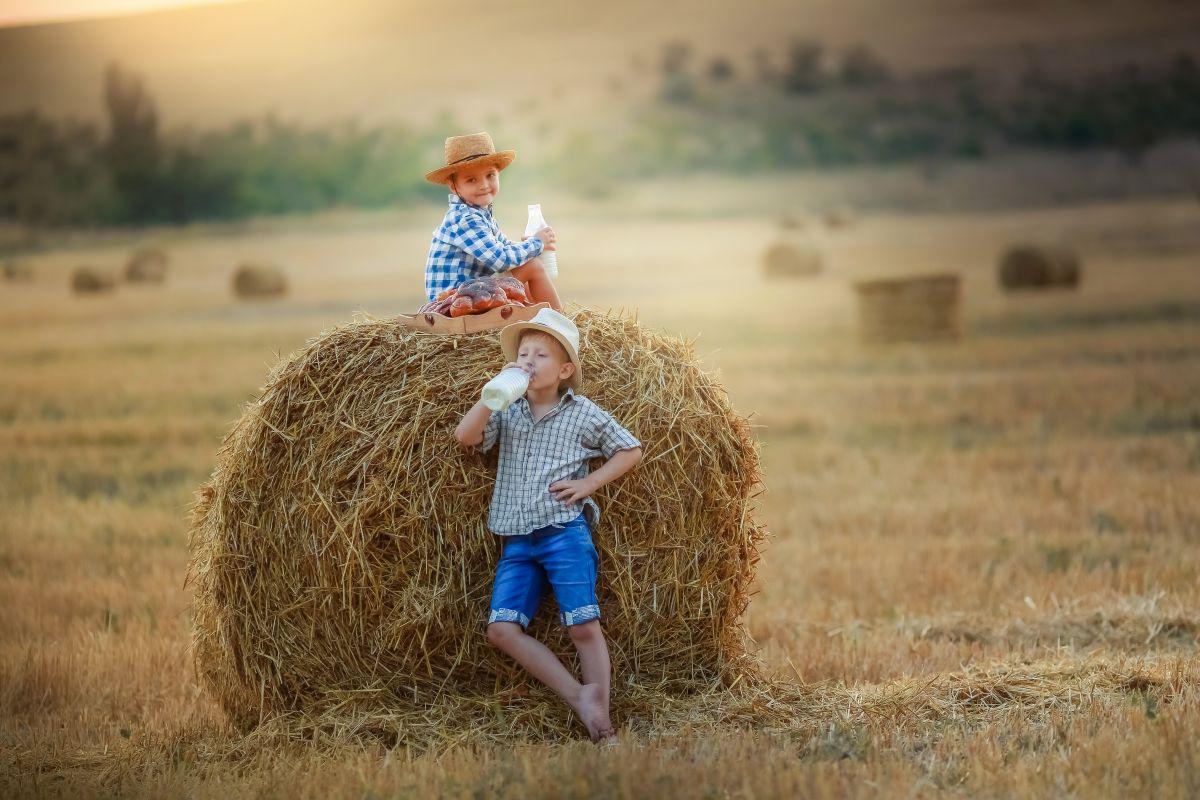 lactate bio pentru copii