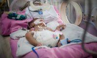 nou născut în incubator