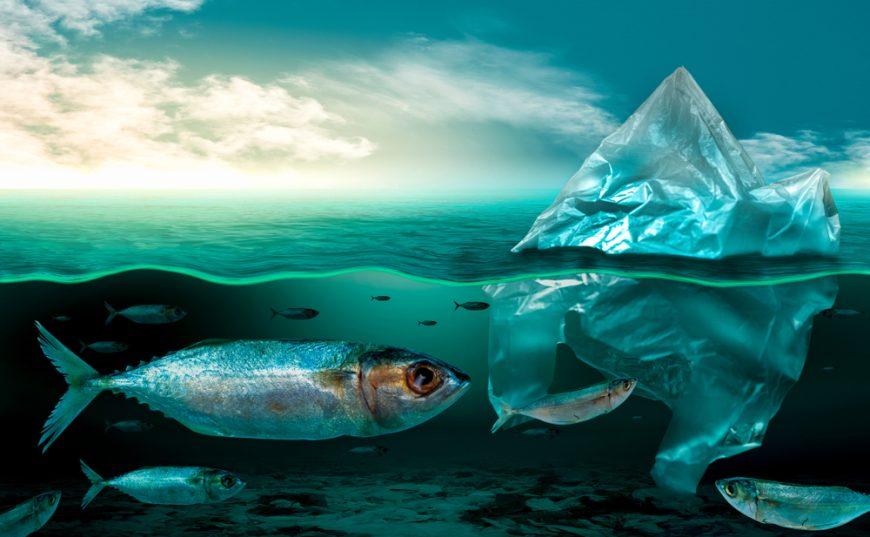 poluare in mari